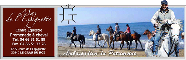 Promenade cheval au Grau du Roi