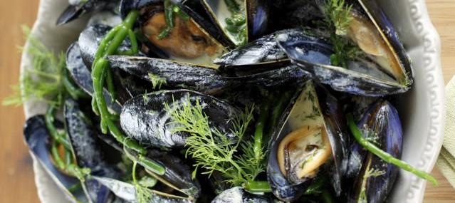 Moules à la Salicorne sauce crémeuse